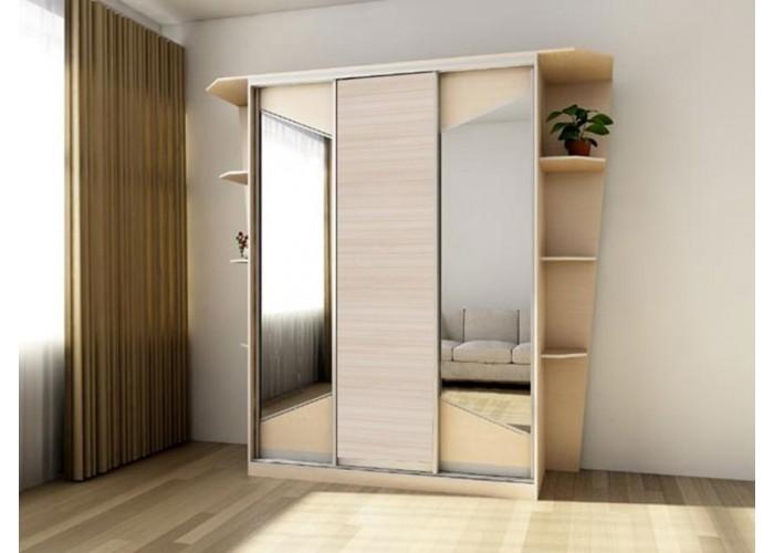 Шкаф-купе с зеркальными дверями под заказ 16  1