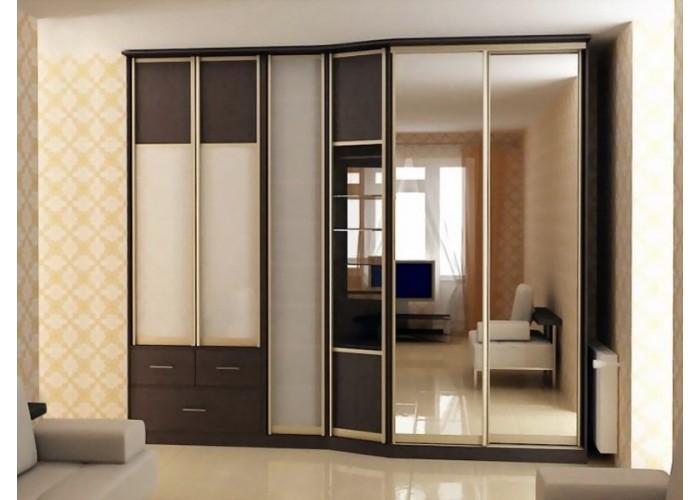 Шкаф-купе с зеркальными дверями под заказ 17  1