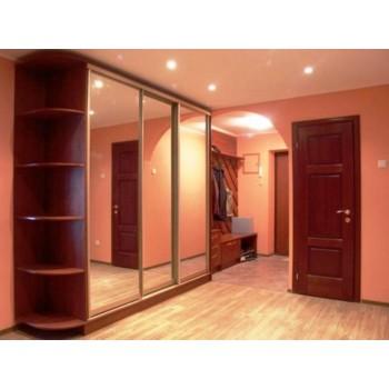 Шкаф-купе с зеркальными дверями под заказ 11