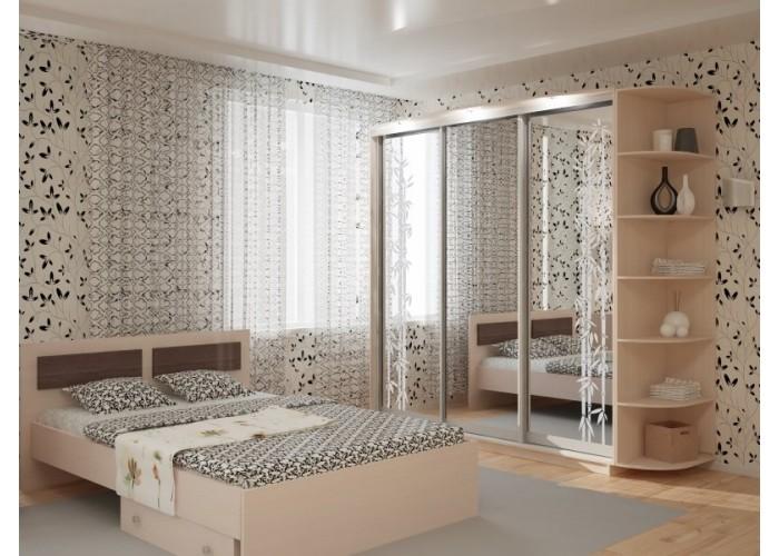 Шкаф-купе для спальни под заказ 2  1