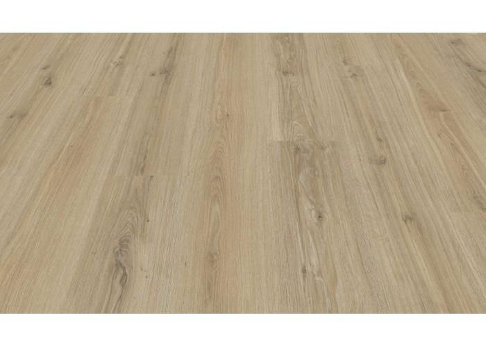 Ламинат My Floor: Dutch Oak |M8016| Голландский дуб  1