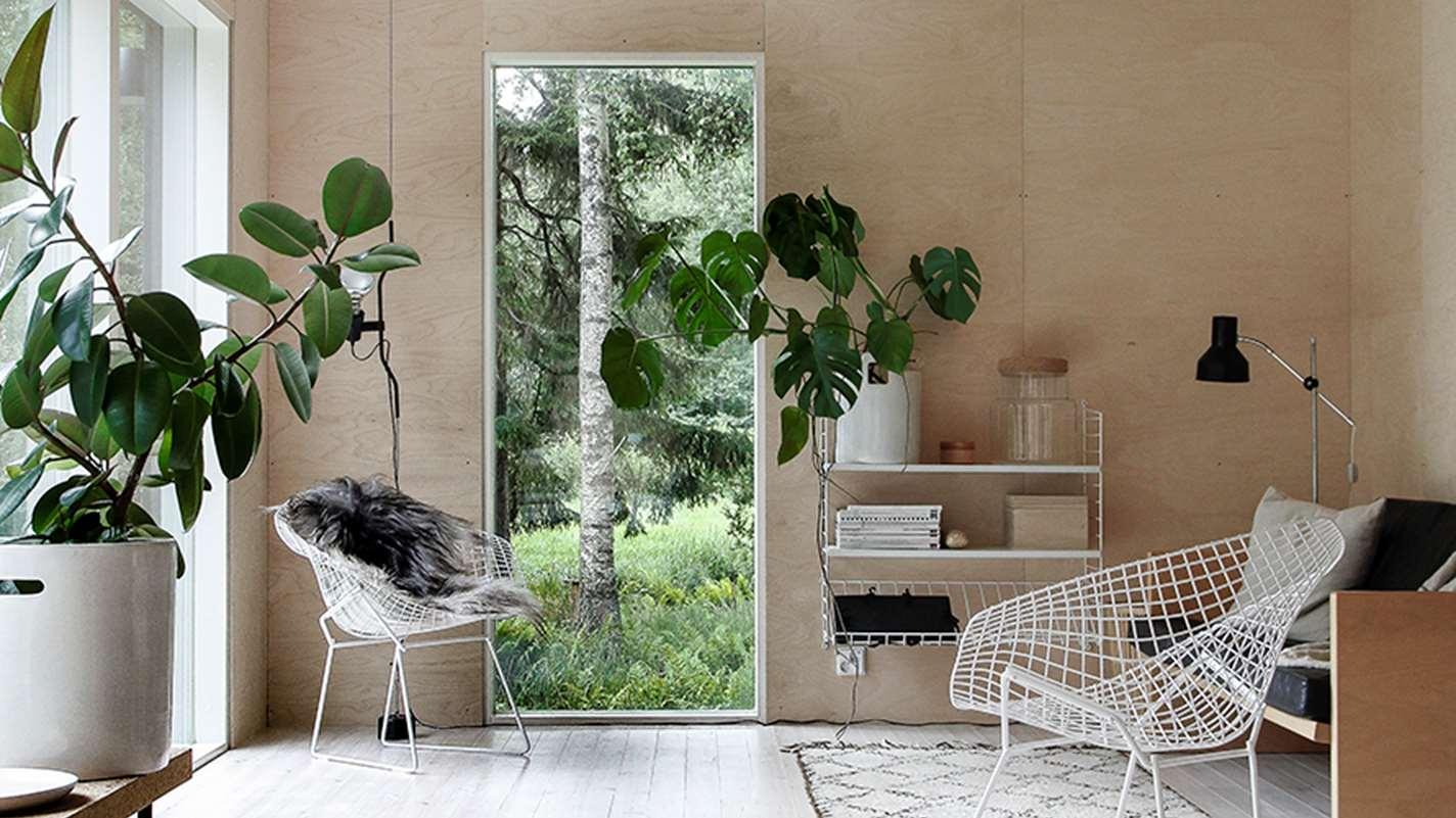 Растения в оформлении интерьера