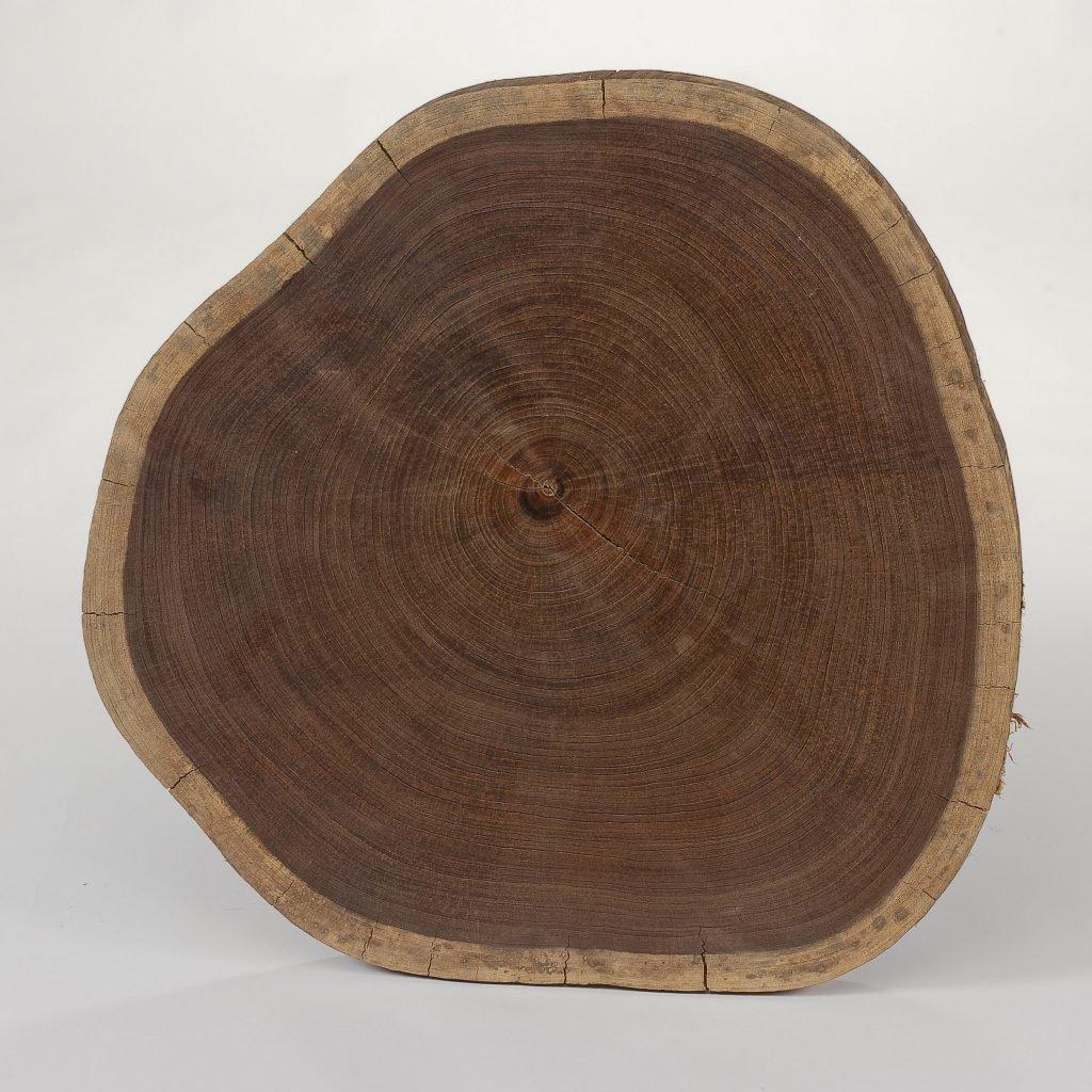 Срез дерева венге
