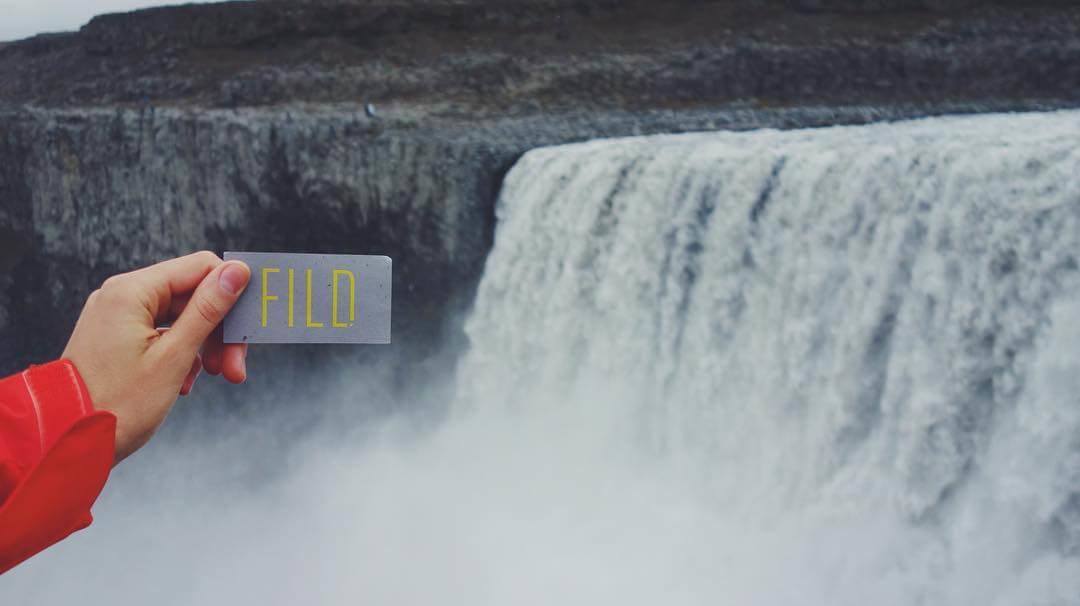 Лаконичный логотип компании FILD