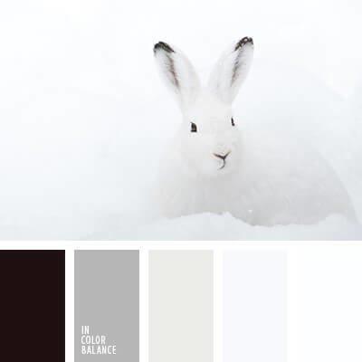 Сравнение белого зайца на снегу с инрьером в светлых тонах