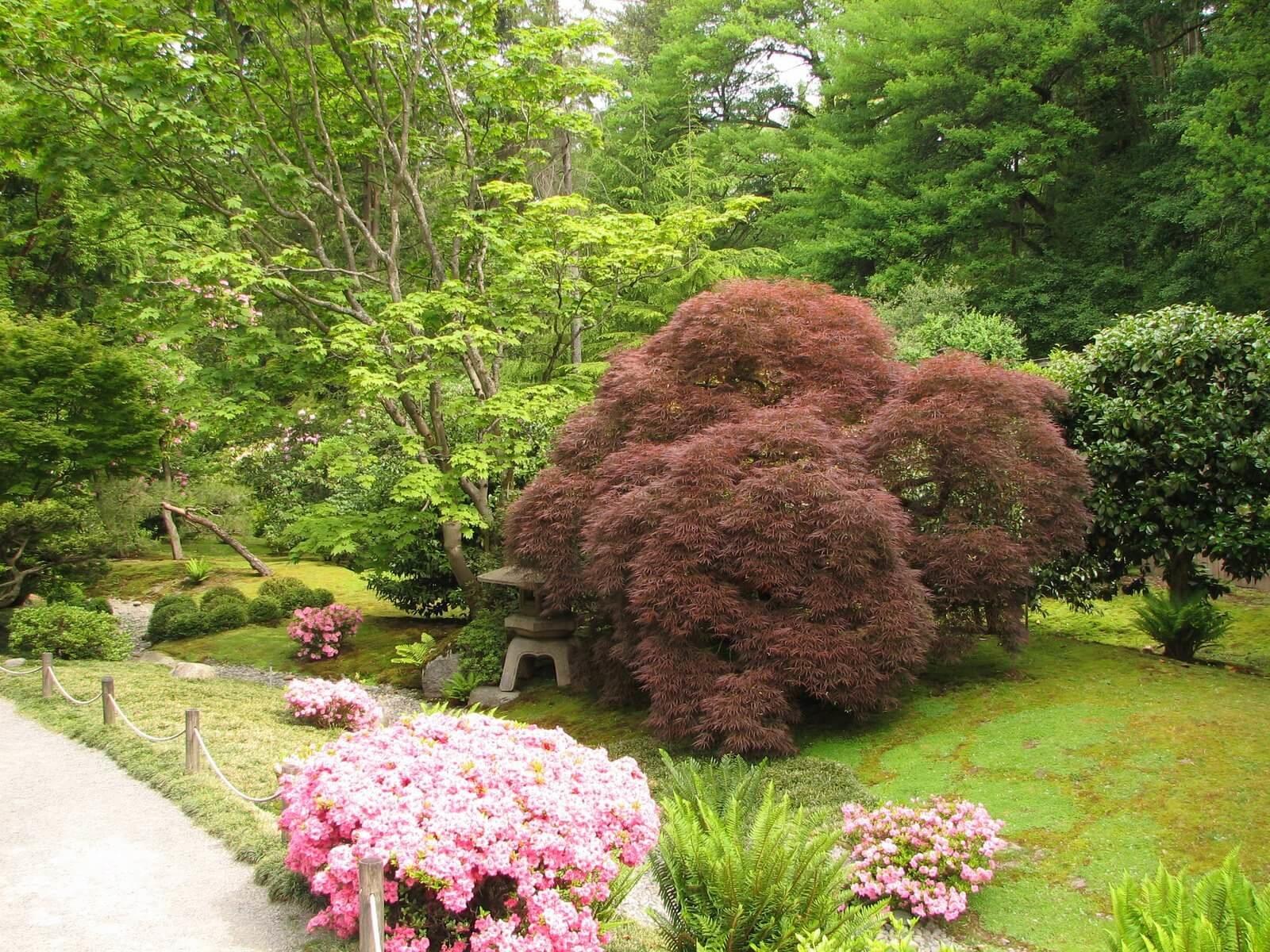Райский уголок японского сада